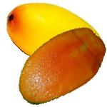 Dussehri-Mango