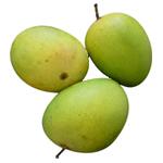 Langra-Mango