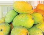 Rasalu-Mango